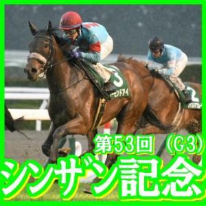 【シンザン記念(G3)】(2019日刊馬番コンピ活用術予想篇)