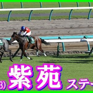 【紫苑ステークス(G3)】(2019血統データ活用術予想篇)