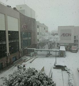 ★ 雪! 雪!! 雪!!!★