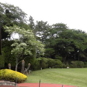 ゴルフの環境
