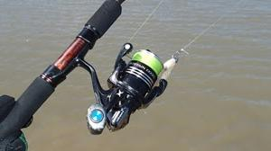 Golden snapper #22, barramundi and 54cm Barramundi #1195-1196Ultralight reel and rod