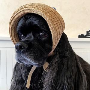 つば折れ麦わら帽子