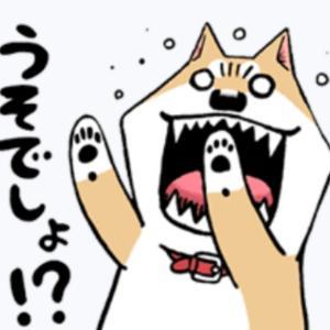 Newコーナー(꒪ꇴ꒪   )!? 今夜のつまみの1品☆おっさんセット