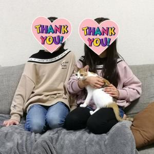 【幸せ報告】かわいいかわいい三毛ちゃん、幸せになりました