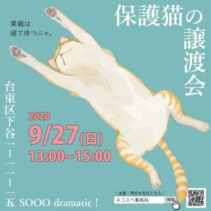 【9月27日】保護猫の譲渡会