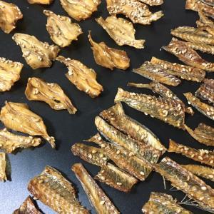 【見える化】魚の骨並べてみました