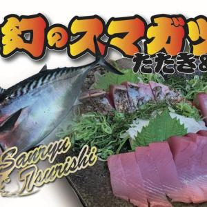 【三流TV】絶品幻のスマガツオを刺身とタタキで食べる!!
