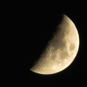 南西に、月在り。