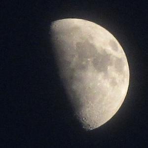 月は誰のものなんでしょうね