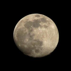 久方振りに月を見た、撮った。