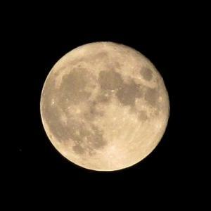 月に次ぐ月