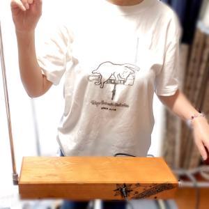 今ならTシャツ1000円オフ!