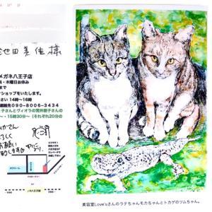 東京メガネでのアート展示