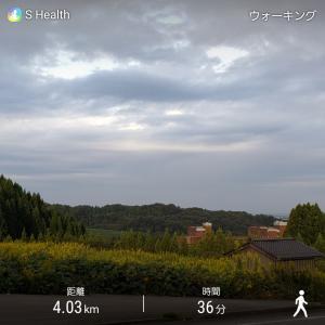 早朝ウォーキング 秋の風景