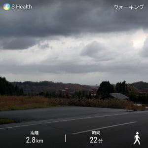 早朝ウォーキング ☔雨が降ってきました(´•̥̯•̥`)