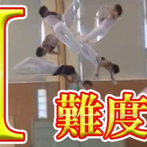 【双子H】【凄い技】成功者が世界で4人!体操の最高難度の伸身ブレットシュナイダー!(ミヤチ)