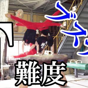 【F難度ブスナリ】現役時代に練習していた技に挑戦してみた!!【双子H】