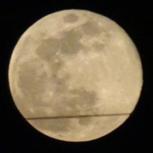 スーパームーン すごい大きな月に驚き