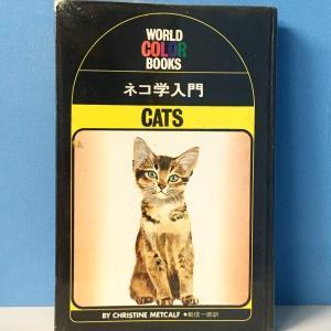 見えないネコちゃんと持ち主が浮かび上がってくる本♡