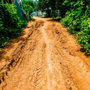 カンボジアの田舎道をサイクリング