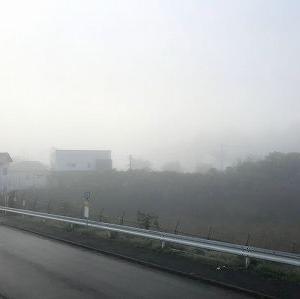 霧の朝からのスタート
