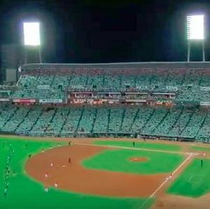 グリーンに染まるスタジアム