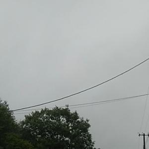 梅雨の月曜におっはー!