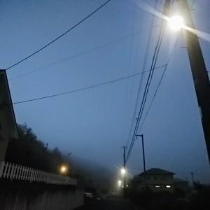 朝靄におっはー!