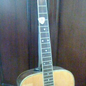 ホコリあるギター