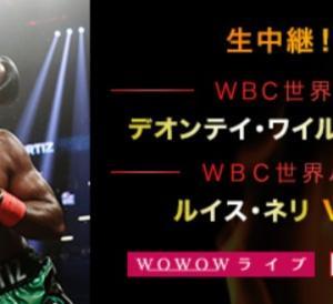 ボクシング ワイルダーvsオルティス K-1 武尊vs村越 城戸 ドーピング発言 深夜の新宿ジム
