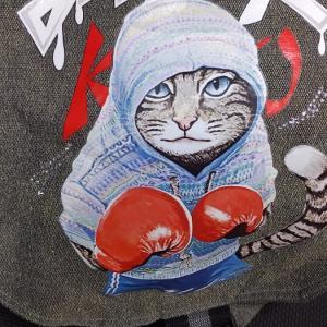 グローブをはめた猫 19:00-6:00 新宿歌舞伎町キックボクシングジム 新宿スポーツジム