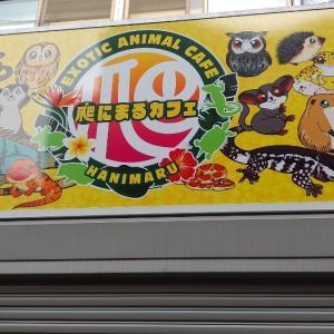 東新宿の気になるお店