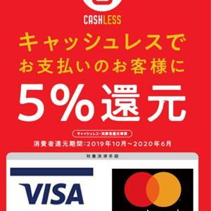 ジム選びのポイント6 5%還元あと5日 19:00-6:00 新宿歌舞伎町キックボクシングジム