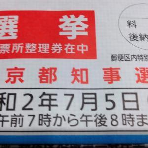 東京都知事選挙 19:00-6:00 新宿歌舞伎町キックボクシングジム 新宿スポーツジム