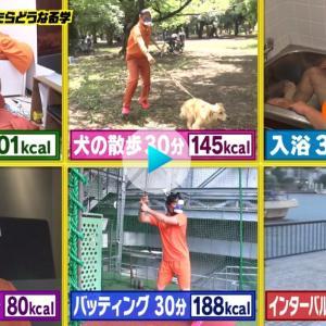 カロリー消費と運動 19:00-6:00 新宿歌舞伎町キックボクシングジム ダイエット