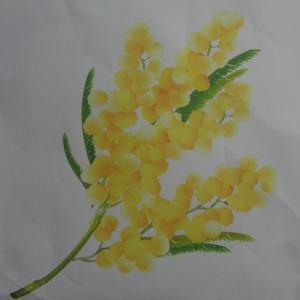 ミモザの花をフリッターを溶かして、小鳥を付けて作ってみました。
