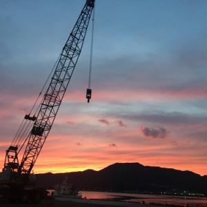 今日の夕景と昨日のアサギマダラ(大島)