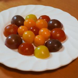 トマトとゴーヤ