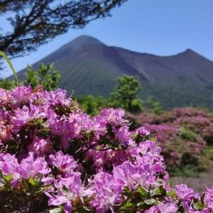 23日.ミヤマキリシマを見に快晴の高千穂河原へ