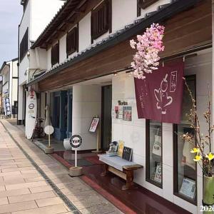 【桜七分咲き】当店裏手の桜土手がきれいに咲き始めました!