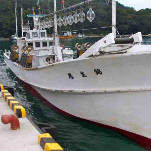 鯛釣り漁に出てきました。 2011/10/05 錦生丸レポート