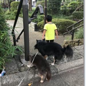 3連休(秋分の日)前のお散歩