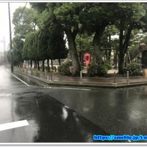 台風第19号 (ハギビス/Hagibis) in 2019
