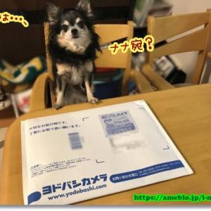 ねんど板 & 工作マット from ヨドバシカメラ
