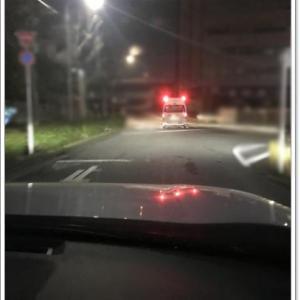 【お知らせ】 Mochaパパの緊急入院