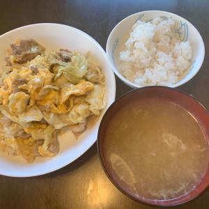 昼食。豚・卵・キャベツ炒め、麦ごはん、しじみの味噌汁。