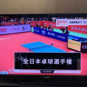 卓球全日本女子シングルス決勝。石川佳純ー早田ひな