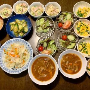 夕食は、ビーフストロガノフ、マスタード風味のポテトサラダ(胡瓜・ハム)、サニーレタス・胡瓜・トマト・ミニトマト、キュウリの糠漬け・鰹節、鶏ひき肉・キャベツ・玉ねぎ・人参炒め、ニラ玉、もやしの味噌汁、柿。今日買った澤乃井の酒の華わっふる。それほど酒粕の味はしなかったけど、美味しかったww 緑茶と。