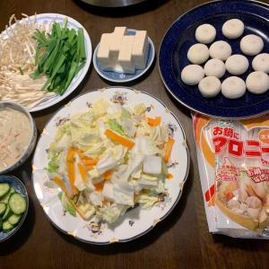 夕食は、丸餃子・白菜・人参・ネギ・豆腐・えのき・もやし・ニラ・マロニー鍋、チキン・人参・カリフラワーのココナッツミルクシチュー、胡瓜の糠漬け、ぶどう。