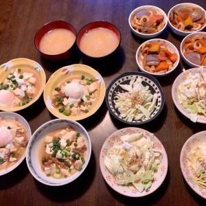夕食は、牛肉豆腐・ネギ・温泉卵、根菜金平(竹輪・蒟蒻・蓮根・牛蒡・人参)、キャベツの塩だれ和え・胡麻、大根の味噌汁、ゴールドキウイ。
